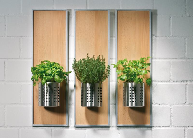 Portavasi per erbe aromatiche in cucina bricoportale fai da te e bricolage - Erbe aromatiche in casa ...