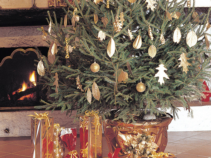 Decorazioni natalizie con noci bacche foglie colorati d 39 oro - Decorazioni con pigne ...