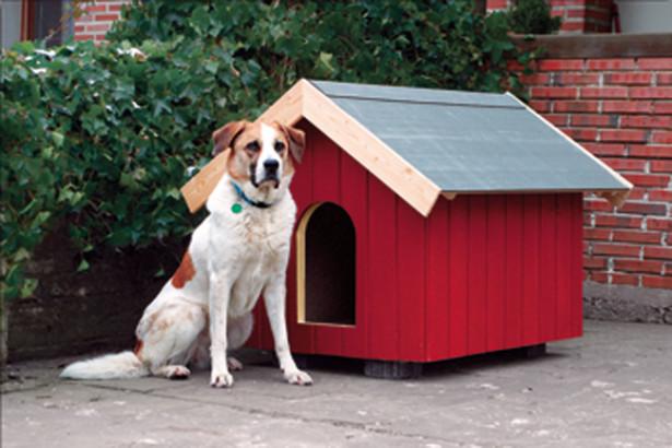 Costruzioni per animali categoria bricoportale il for Costruire cuccia per cani da esterno