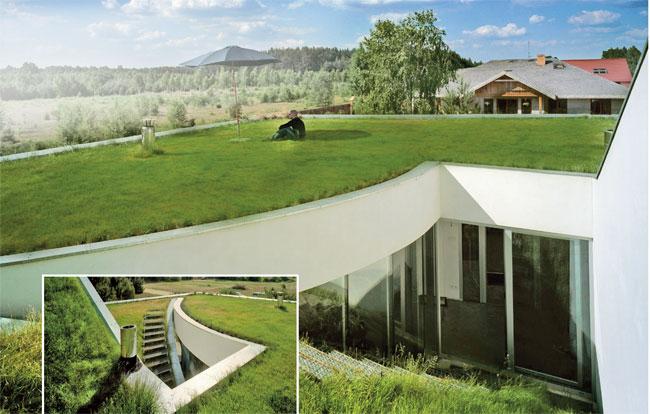 Come realizzare un tetto verde bricoportale fai da te e for Sezione tetto giardino