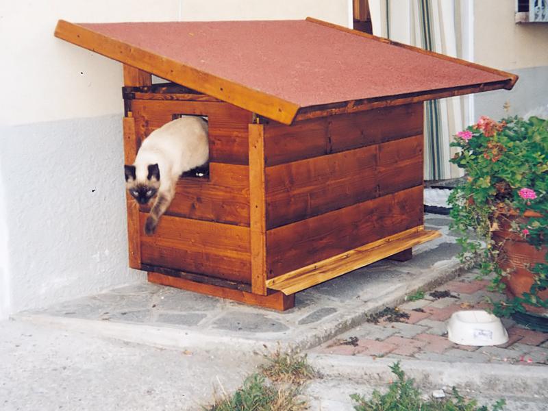 Cucce per gatti da esterno riscaldate tavolo consolle for Cucce per gatti da esterno coibentate