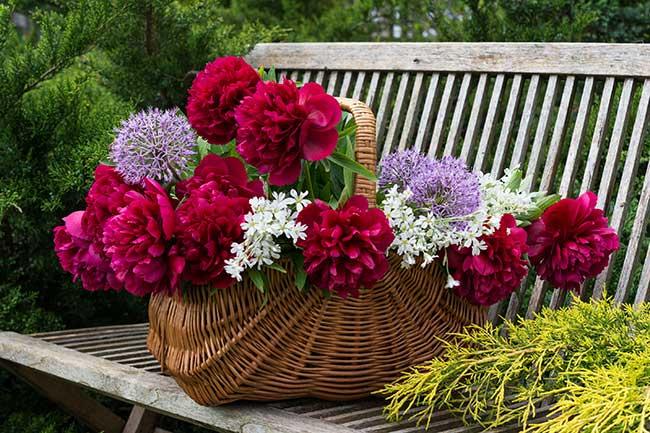 fioriera con cestino
