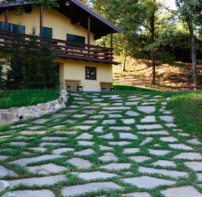 Come posare la pietra naturale bricoportale fai da te e - Camminamento pietra giardino ...