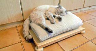 cuccia in legno per gatti