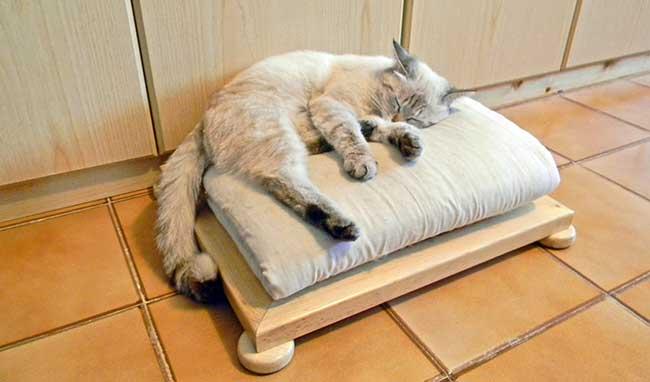 Mobili Per Gatti Fai Da Te : Cuccia per gatti fai da te in legno foto passo passo