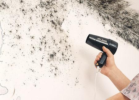 Eliminare la muffa in modo efficace bricoportale fai da te e bricolage - Eliminare condensa in casa ...