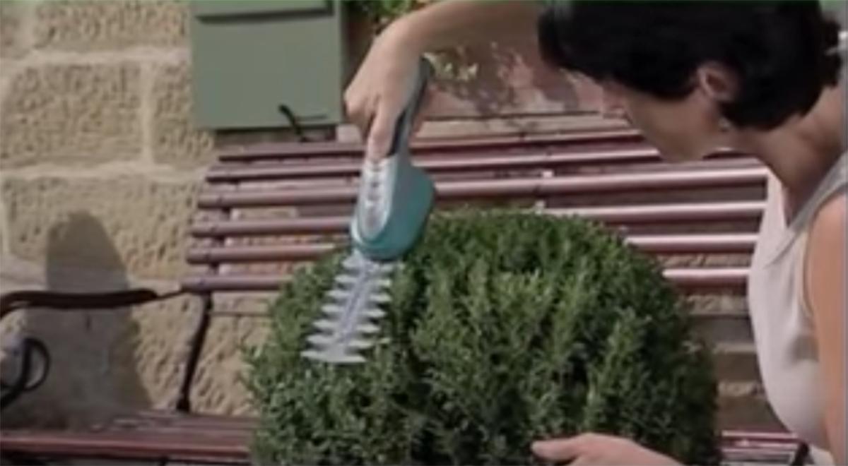 curare-giardino