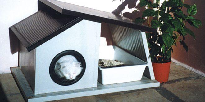 Cuccia per gatti da esterno fai da te costruirla con for Pitturare esterno casa fai da te