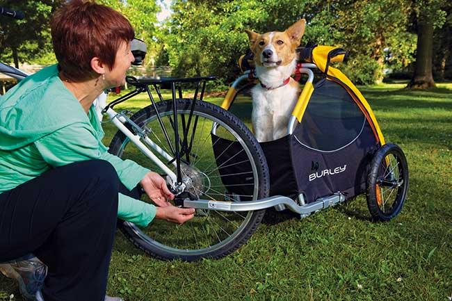 trasportino cani per bici