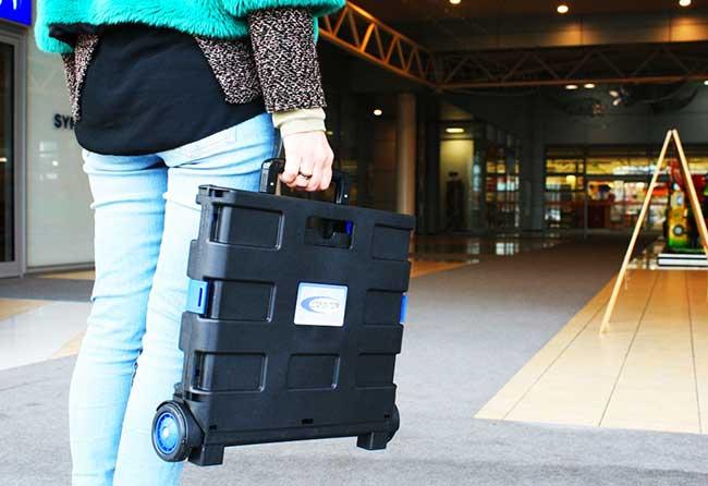 Trolley pieghevole portatutto Sodifer