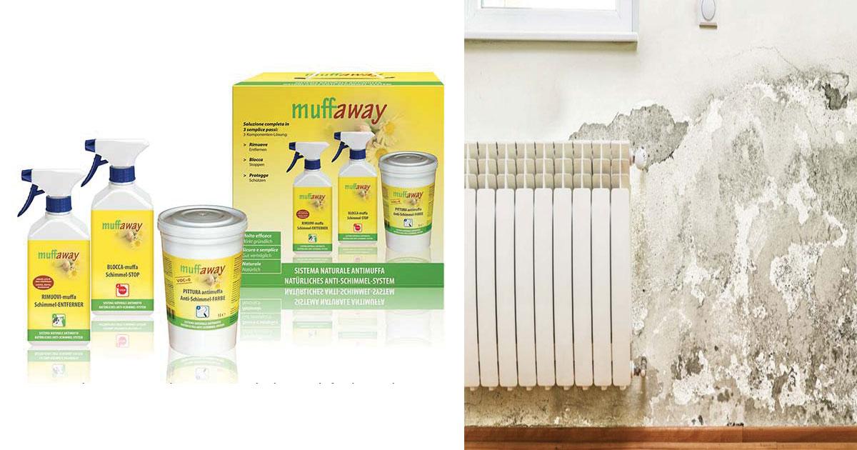 Muffa sui muri come eliminarla con muffaway - Muffa sui muri esterni ...
