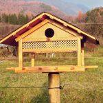 Mangiatoia per uccelli fai da te | Come costruirla passo-passo
