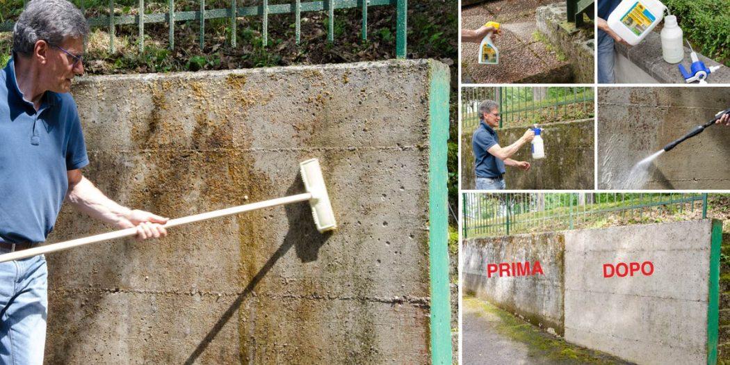 risanare muro umido
