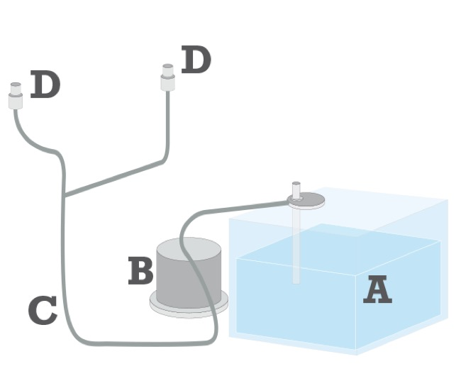 circuito lavavetri auto