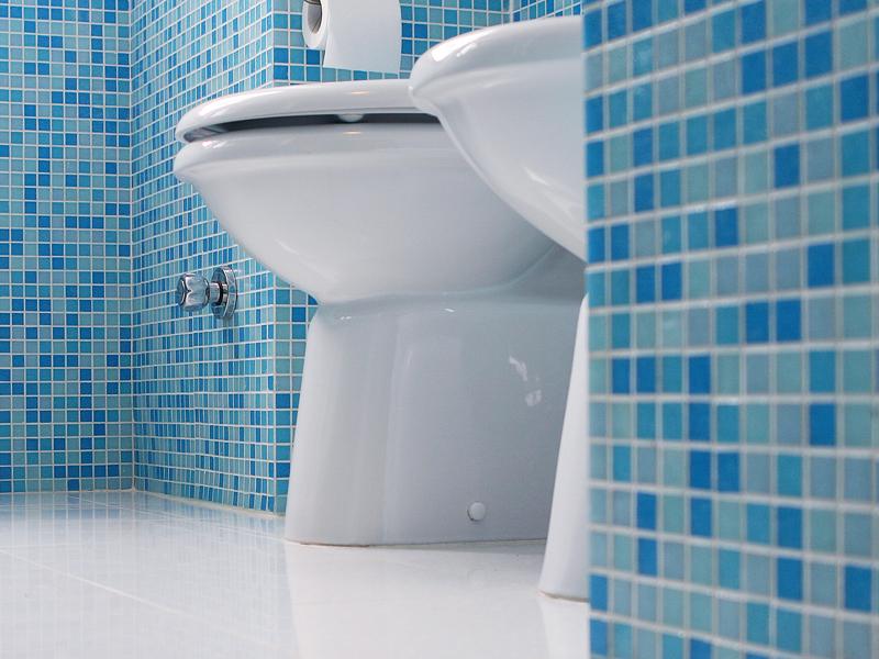 come sostituire il wc