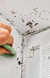 Isolare con il polistirolo per eliminare la muffa sulle pareti - Eliminare muffa in casa ...