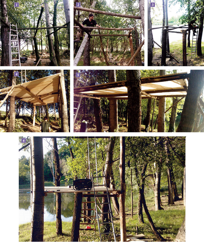 Come costruire una casa sull 39 albero bricoportale fai da for Come costruire l ascensore di casa