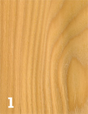 essenze legno, essenze naturali del legno, legno essenze, essenza legno, essenze di legno, essenze, colori legno,