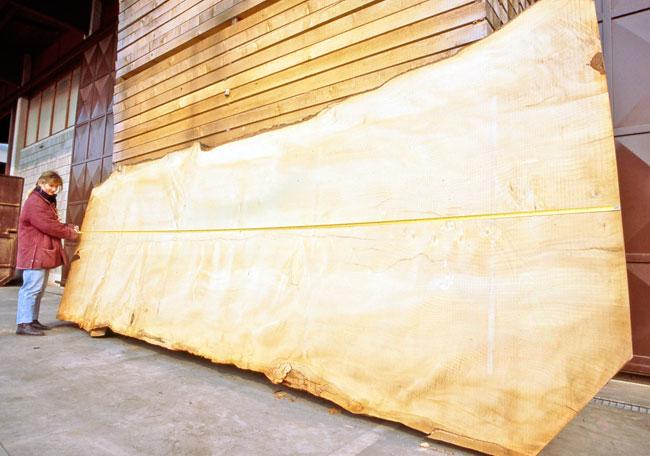 Dall 39 albero alle tavole di legno bricolage bricoportale - Tavole legno massello ...
