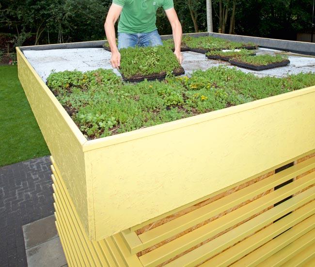 Come costruire una casetta di legno da giardino guida completa - Costruire un giardino ...