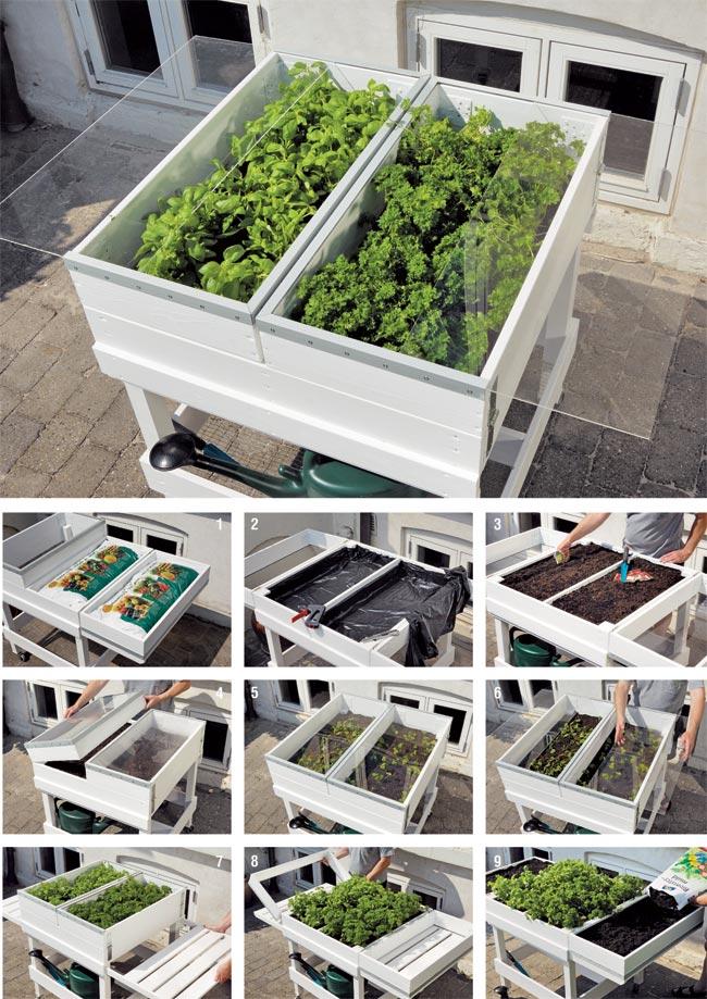 Orto in cassetta come costruire il banchetto fai da te for Cassoni per orto rialzato