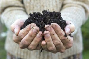 concimi naturali, concime, concimazione, concime organico, concimi biologici, concime per prato, concime stallatico, concime naturale, concimi sintetici