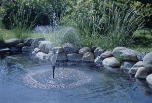 manutenzione laghetto, manutenzione laghetto artificiale, pulizia laghetto, laghetto artificiale, laghetto fai da te, pulire il laghetto